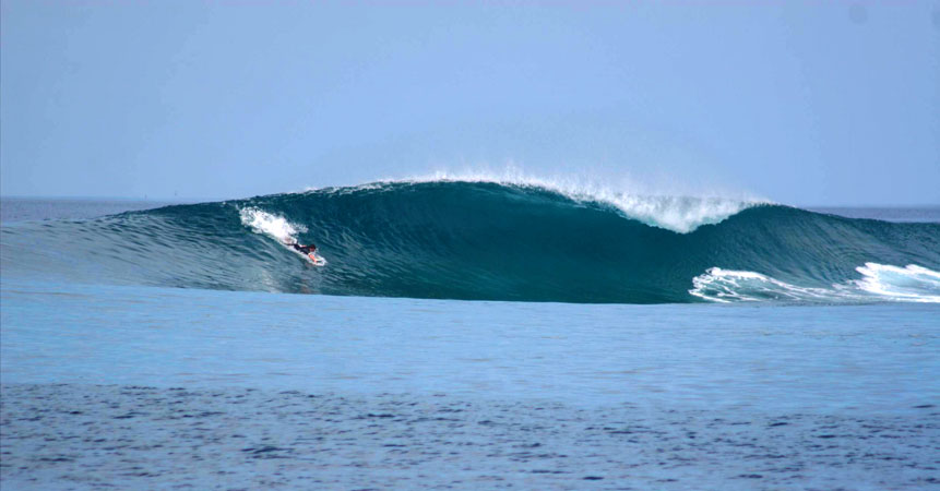 Cooking surf in the Maldives - surf camp Maldives